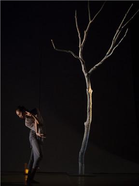 中国舞蹈十二天:郑杰舞蹈作品《寂静之上》