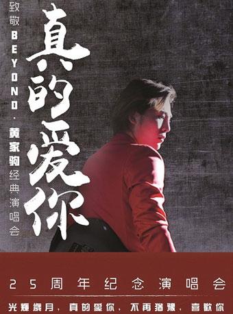 真的爱你—致敬BEYOND·黄家驹25周年纪念演唱会