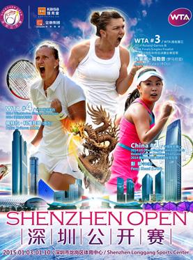 2015 Shenzhen Open